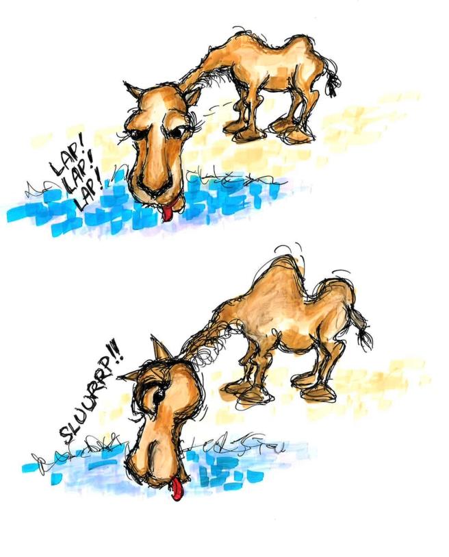 camel2_small